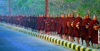 Birmaniemoines