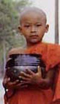 Birmaniemoinillon3
